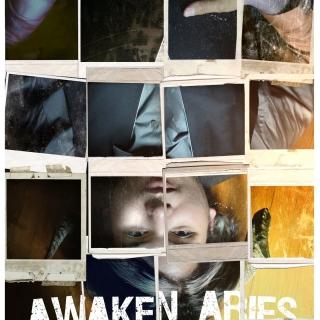 AWAKEN ARIES